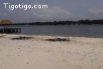 Baie Milliadaire en bordure d'eau vente parcelle 1ha