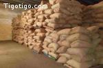 Grand stock de sésame à vendre et prêt à l'exportation