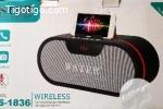 Haut-parleur sans fil Bluetooth