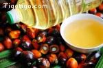 Huile de palme et autres huiles de cuisson à vendre