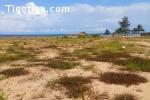 san-pedro en bordure de mer vente terrain 14.585 m²