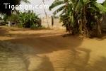 Terrain constructible à vendre ( Lome Zanguera)